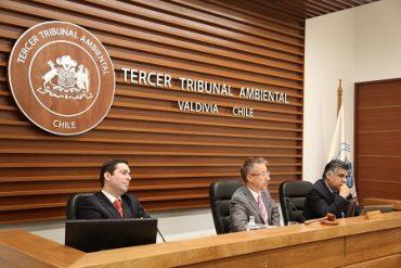 Sitio arqueológico Monteverde: Tribunal Ambiental de Valdivia recibió pruebas y alegatos en demanda por daño ambiental