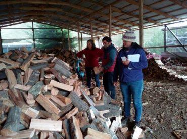 Comité Técnico Regional de Leña y Chile Valora trabajan para profesionalizar el rubro