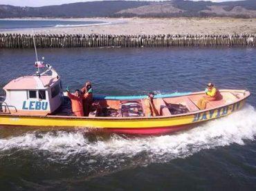 Pesca artesanal: jibia debe ser 100 % del sector y extraída con línea de mano