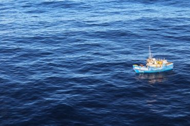 Sernapesca y Armada detectan ocho embarcaciones pescando ilegalmente en la zona