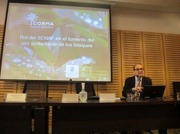 """Presidente de CORMA, Fernando Raga: """"Nuevo servicio forestal debe ser moderno y con alta capacidad para fiscalizar"""""""