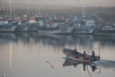 Pescadores artesanales del Bío Bío plantean pesca conjunta y migración dentro de propuestas para modificación a laLey de Pesca