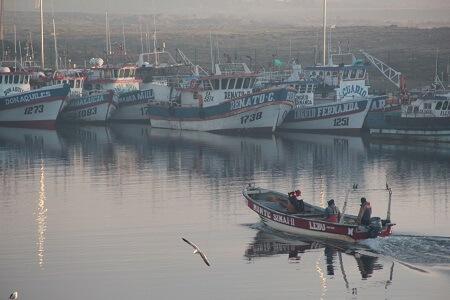 """Sindicato Oficiales de Naves Especiales y Regionales MMN: """"La clase política desatendió la realidad de los trabajadores y de la gente común en general"""""""