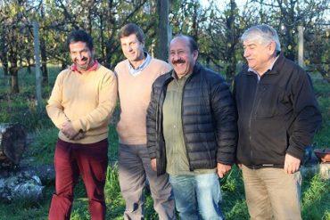 Productores de cerezas de la región avanzan en modelo de exportación a mercados asiáticos y europeos