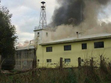 Berger (RN) pidió prontitud para destinar recursos para recuperar segunda compañía de Bomberos de Río Bueno