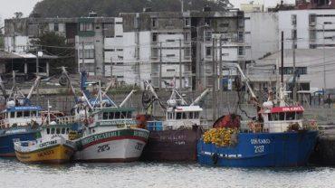 GNL Talcahuano pone en peligro la pesca pelágica y de subsistencia