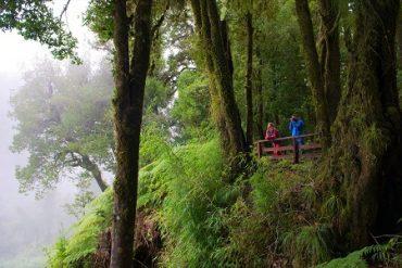 Invitan a participar en Seminario sobre Desarrollo Turístico en Áreas Silvestres Protegidas