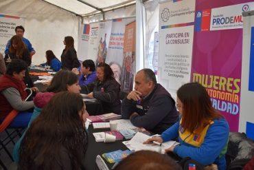 Más de 50 servicios públicos estarán atendiendo consultas en Valdivia