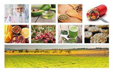 FIA abre nueva convocatoria de Alimentos Saludables