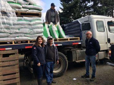 INDAP comenzó entrega de incentivos a pequeños agricultores afectados por lluviasy heladas