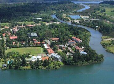 Admisión 2021 en la Universidad Austral: exitosa primera etapa de matrícula