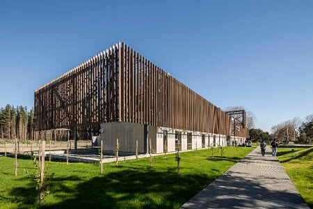 Innovación arquitectónica en madera al servicio de la educación y la cultura