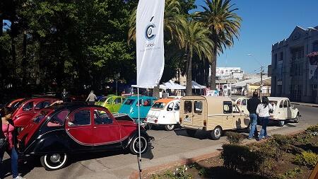 Valdivia es elegida como sede del XIII Encuentro Nacional de Citronetas 2018