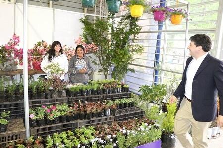 Este viernes se realizará la inauguración de la XV versión de la Expo Primavera en Parque Saval