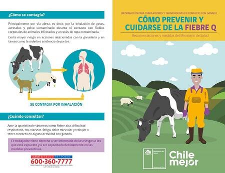 Seremi de Salud Los Ríos mantiene vigilancia reforzada de casos sospechosos de Fiebre Q