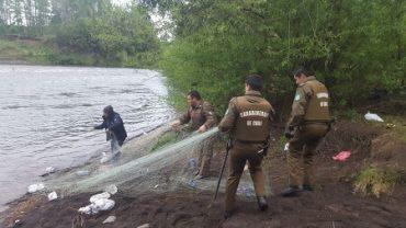 Sernapesca y Carabineros desbaratan campamento de pesca furtiva en Cunco