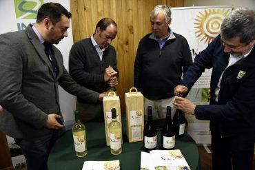 Ministerio de Agricultura lanza oficialmente inédito espumante de grosellas elaborado en Aysén