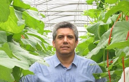 La exitosa experiencia logística de empresa dedicada a la exportación hortofrutícola desde el Biobío