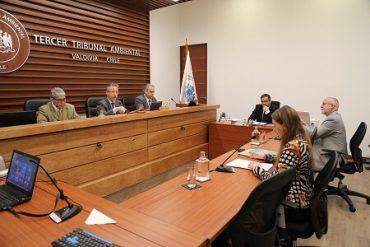 Tribunal escuchó alegatos por proyectos de salmoneras en las costas de Valdivia y Mariquina