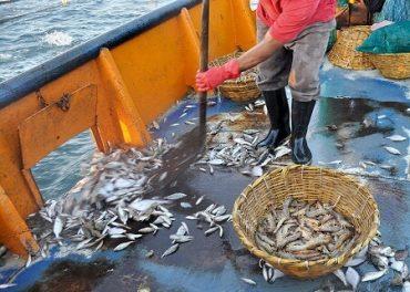 Sernapesca difunde Ley de Descarte a armadores de la pesca industrial