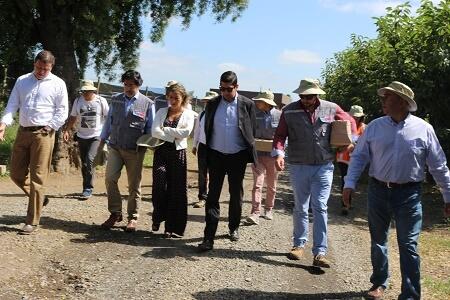 Comienza temporada de fiscalización agrícola en el Biobío
