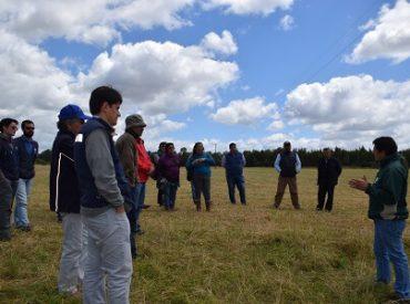 Pequeños ganaderos de Los Ríos participan de días de campo a través de convenio INIA-INDAP