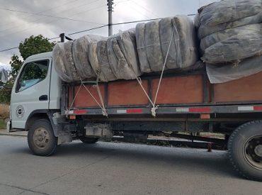 Trabajo de productores del Ceballos y apoyo Municipal permite traslado de 20 mil kilos de lana