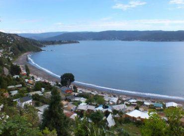 Servicios públicos de Valdivia recaban información de proyectos inmobiliarios en zona costera ante denuncias por infracciones medioambientales