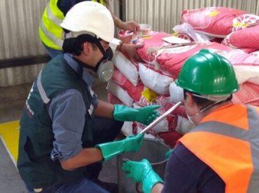 SAG de Bío Bío se reunió con representantes de plantas seleccionadoras de semilla certificada