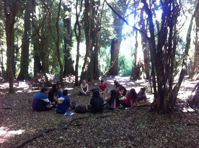 Programa de la UST realiza actividad de senderismo con adolescentes