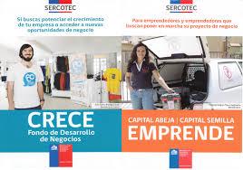 Sercotec abre convocatorias por más de $ 877 millones para impulsar pequeños negocios en Magallanes y la Antártica Chilena