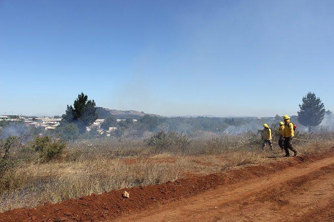Se levantó restricción al uso del fuego para  quemas de desechos agrícolas en toda la Región del Bio-Bío