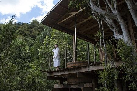 Proyecto turístico sustentable invita a descubrir el secreto mejor guardado de la Selva Valdiviana