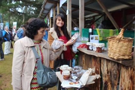 Fiesta del Hongo Silvestre ofrecerá diversas preparaciones con loyo, loyeta, robellón y changle