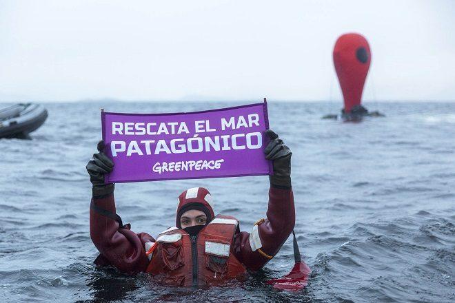 Activistas de Greepeace se lanzan a las frías aguas de seno Skyring