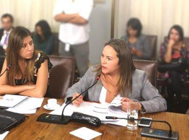 """Diputada (DC) Joanna Pérez pide """"Ley Corta"""" para entregar más competencias y recursos a regiones antes de elección de gobernadores regionales"""