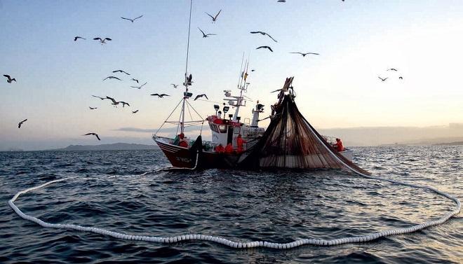 Región de Los Ríos: Sernapesca informa inscripción de recurso Sierra con línea de mano para la pesca artesanal