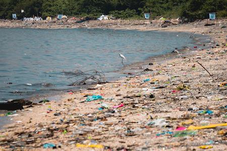 """Greenpeace en el Día Mundial del Medioambiente: """"La gran batalla que hoy enfrenta la humanidad es poder derrotar al plástico"""""""