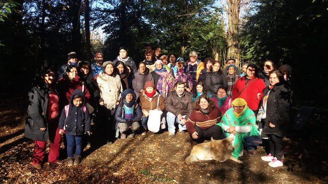 Recolectores de Los Ríos se capacitan en buenas prácticas de recolección sustentable