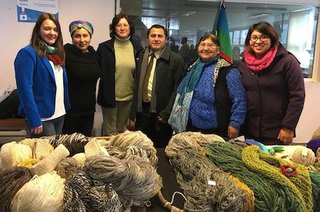 Más de 200 agricultores del Programa de Desarrollo Territorial Indígena mejoran su agricultura en La Unión