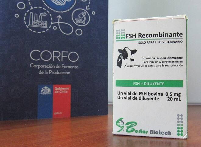 Proyecto financiado por Corfo promete cambiar el manejo de la reproducción ganadera en el sur de Chile