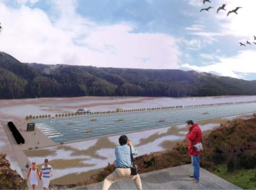 Berger (RN) exigió transparentar real avance de pista de aguas quietas para Valdivia