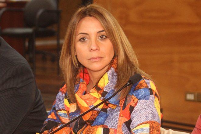"""Seremi de Gobierno por aprobación de Aula Segura: """"Este proyecto pondrá freno a hechos delictuales injustos para la comunidad educativa"""""""