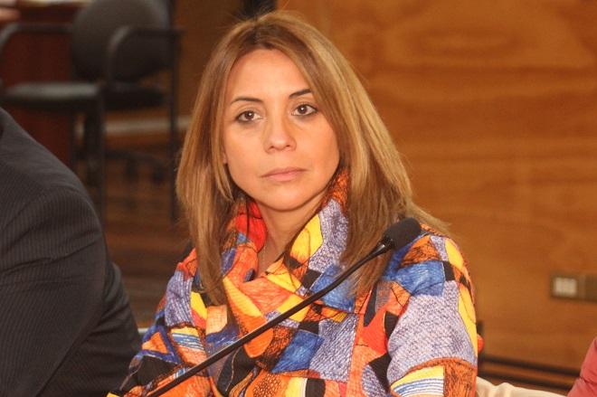 """Seremi de Gobierno rechazó críticas del senador de Urresti al presupuesto regional: """"Llama la atención que levante la voz ahora, siendo que el Gobierno anterior lo rebajó, perjudicando a la Región"""""""