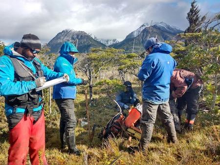 INFOR y UACh presentan propuestas para la restauración del bosque nativo a gran escala en el centro sur de Chile