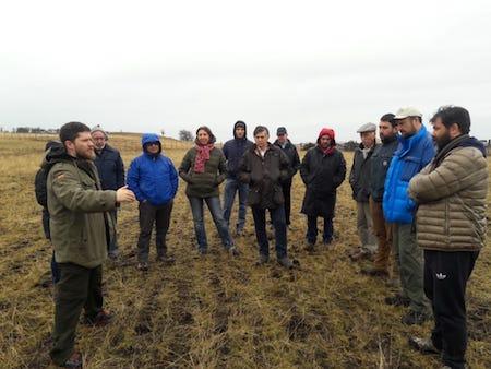 Seremi de Agricultura: estamos embarcados en un plan para recuperar la productividad de las praderas y pastizales naturales