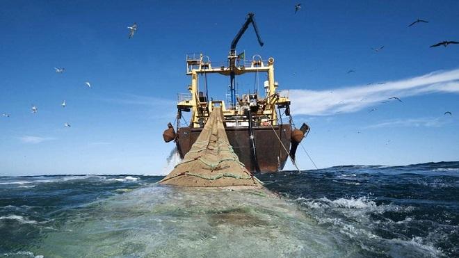 Oceana celebra anuncio de Subpesca de restringir la expansión de la pesca de arrastre
