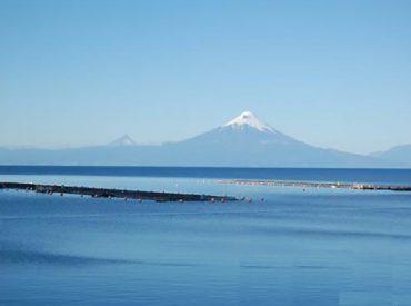 Corte de Puerto Montt rechaza recurso de protección contra Ministerio del Medio Ambiente por no declarar el lago Llanquihue como zona saturada