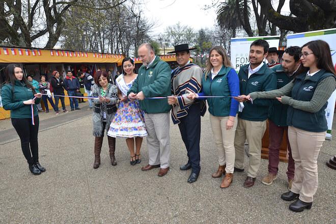 Feria Cultural y Artesanal de Temuco contará con 66 expositores de toda la región