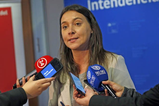 """Seremi de Gobierno del Biobío: """"La regionalización es un compromiso que seguiremos fortaleciendo con acciones concretas"""""""